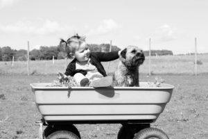 bambina e animale, amici, pet therapy